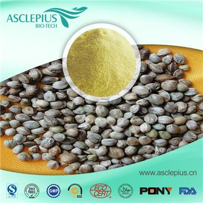 Hemp Seed Protein Powder Supplier Wholesale