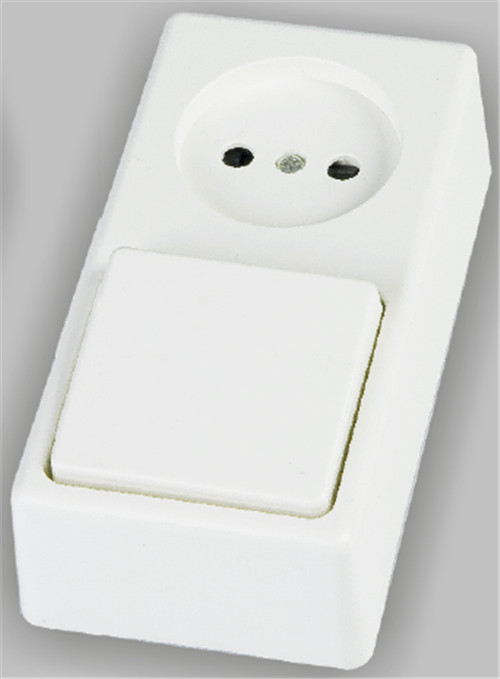 Surface type 2P socket with switch