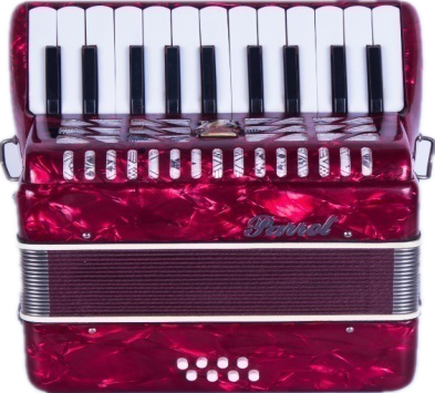 Parrot 22 Keys 8 Bass Piano Accordion With Case And Straps