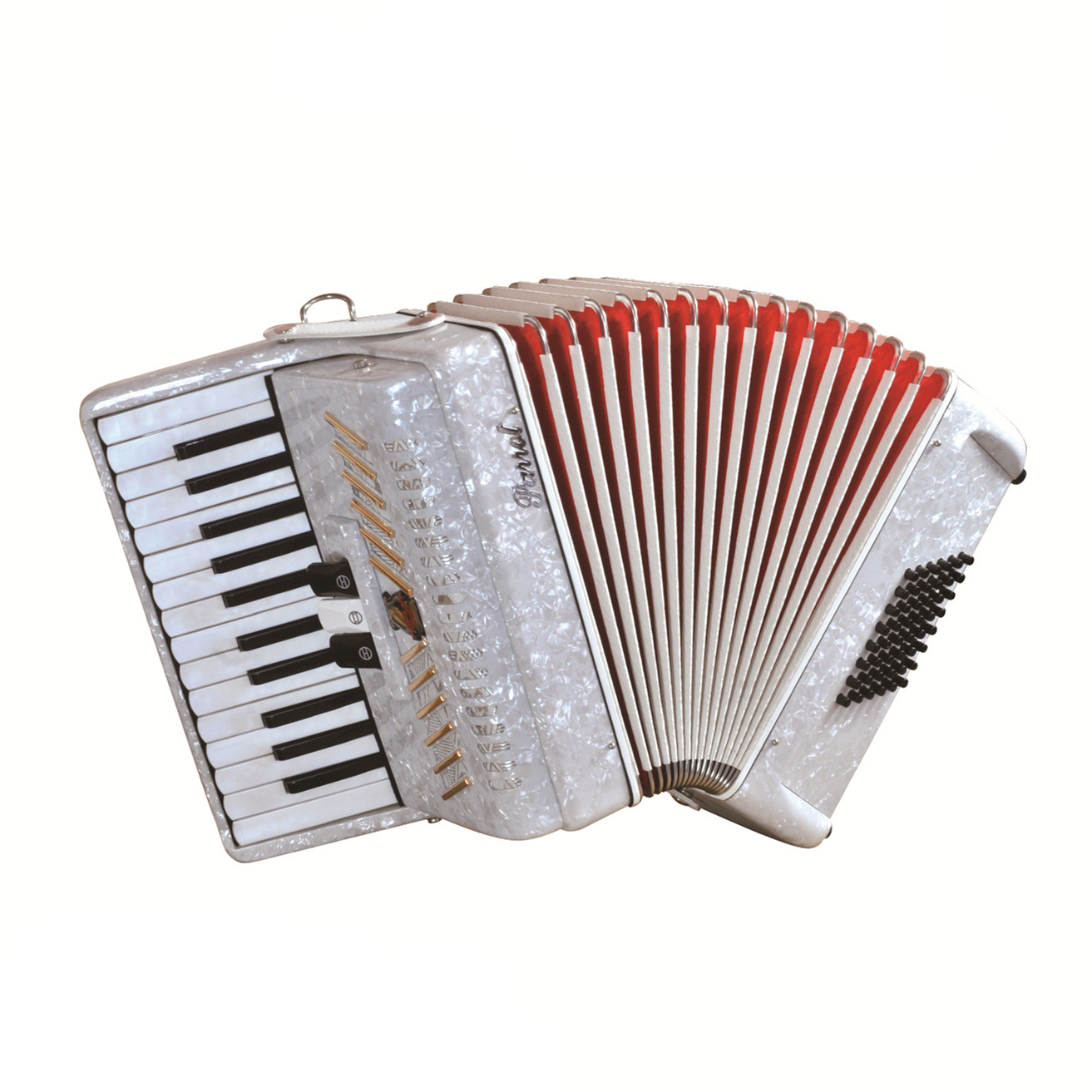 Parrot 26 Keys 48 Bass Piano Accordion With Case And Straps