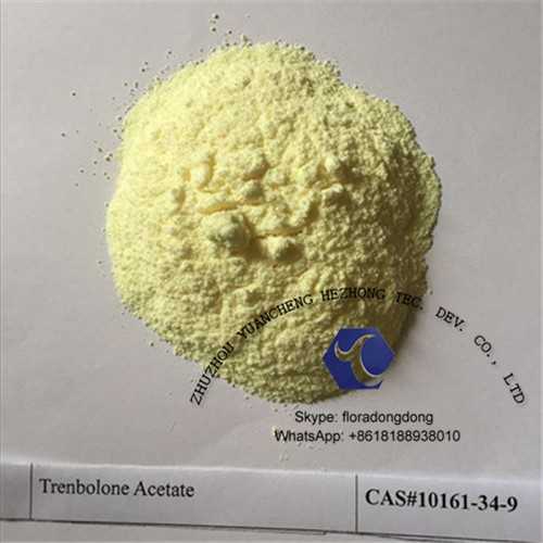 CAS: 23454-33-3 Trenbolone Hexahydrobenzyl Carbonate Steroid Powder with Factory Supply