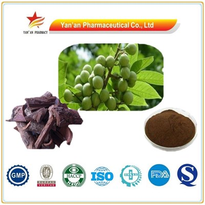 Good Quality Pygeum Africanum Extract Phytosterols