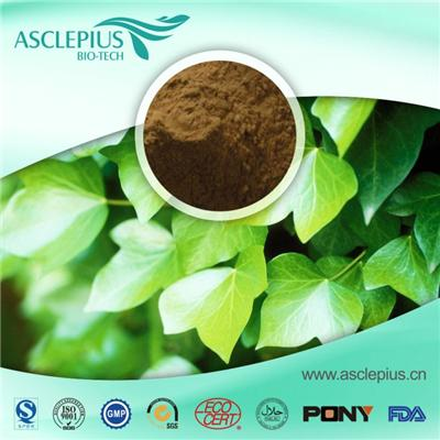 English Ivy Leaf Extract Supplement Supplier