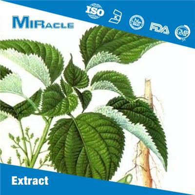Nettle Root Extract|6,7-Dihydroxybergamottin|DHB|3,4-Divanillyltetrahydrofuran|DVTHF Powder for Sale