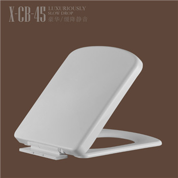 Factory Supply PP bidet toilet seat for bathroom CB45
