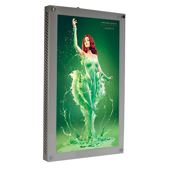 21.5 inch Wall Mount Industrial Metal Frame LCD Digital Signage Display
