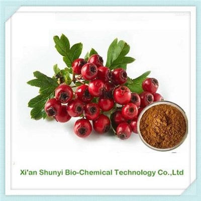 Hawthorn Berry Extract | Natural Hawthorn |standardized Extract