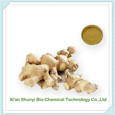 Ginger Extract|pure Ginger Extract |Gingerols