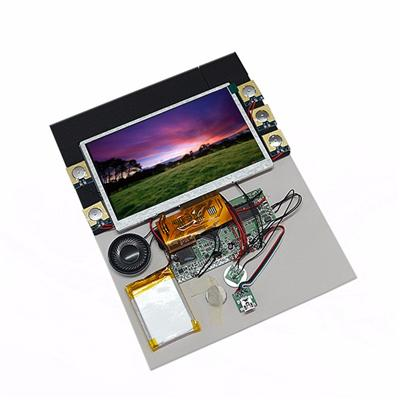 4GB 7''HD Video Map Module With Touch Screen For Promotion