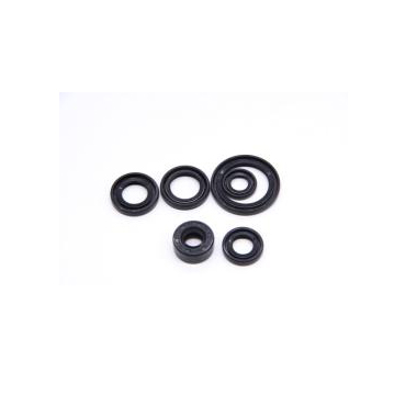 Motorcycle Front Fork Oil Seal Kits