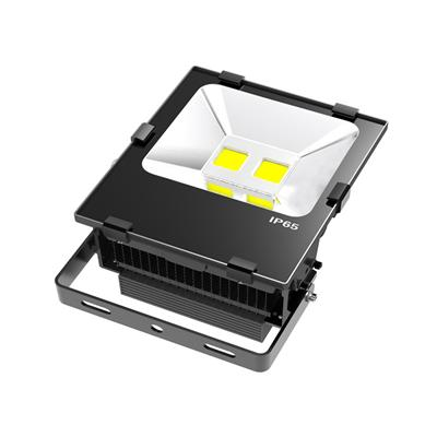 IP65 COB CE SAA approved  internal driver 50w led floodlight