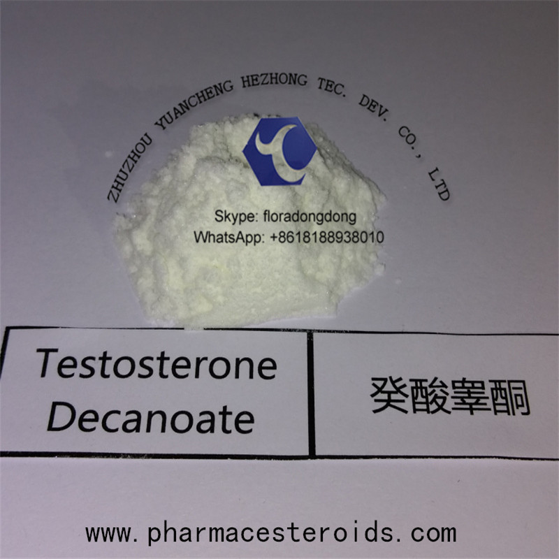 Steroid Powder Testosterone Decanoate for Bodybuilding Muscle