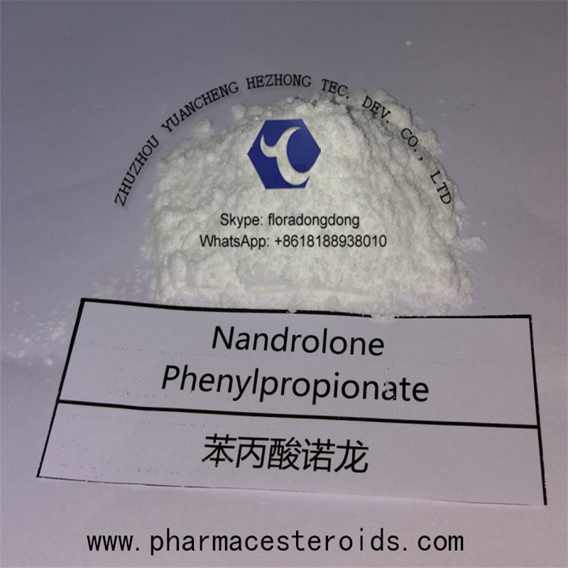 Npp Durabolin Nandrolone Phenylpropionate for Bodybuilding