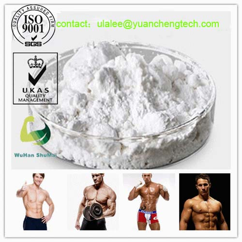 Powerful Anabolic Steroid Powder Trenbolone Acetate for Bodybuilding