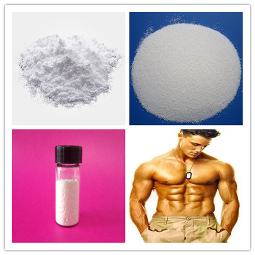 99% High Purity Powder Cortisone Acetate