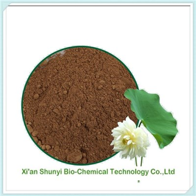 Lotus Leaf Extract| High Quality Lotus Leaf Extract 4:1-20:1