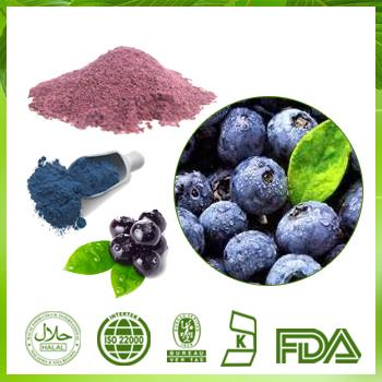 Blueberry Extract 25% Anthocyanidin Cranberry Extract Powder |Bilberry |Cranberry GMP Certified Manufacturer Supply Anthocyanidin