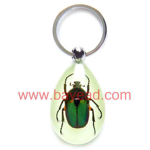 real insect inside man-made amber keychains,so cool gift,unique gift,promotion gift