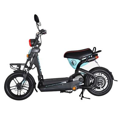 2017 Electric Scooter/e Scooter Kit With Pedal Assistant For Vietnam