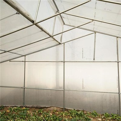 Easy Assembly High Tunnel Tropical Good Ventilation Sawtooth Greenhouse