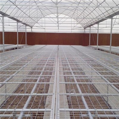 Gothic Cold Frame Plastic Covering Multi Span Greenhouse For Flowers