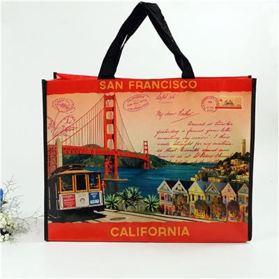 New Printed 100g PP Woven Promotion Shopping Bag On Sale