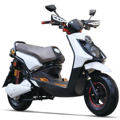 TDR140Z Electric Motor Scooter
