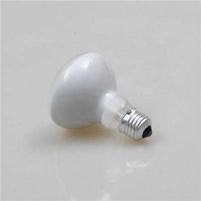 R80 6w Led Filament Bulb E27 Frosted