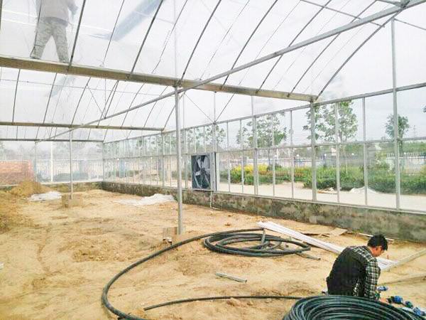 multi-span greenhouse engineering from chinese company