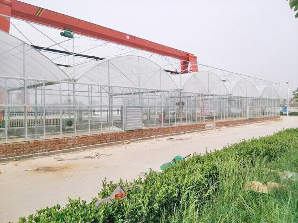 continuous arch greenhouse with low price