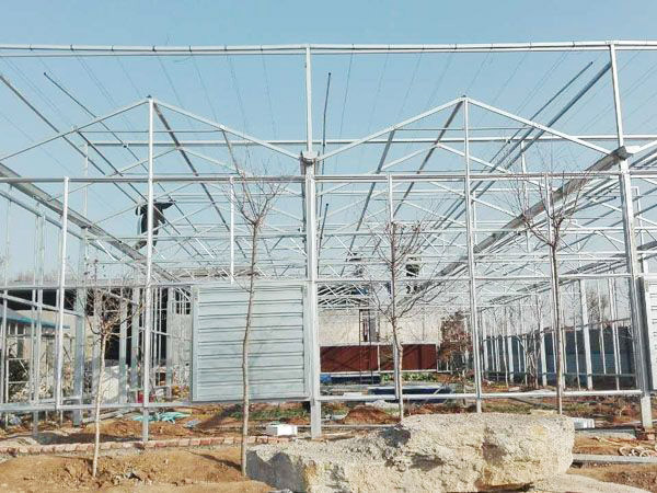 stronger skeleton and insect proof net plastic shading greenhouse