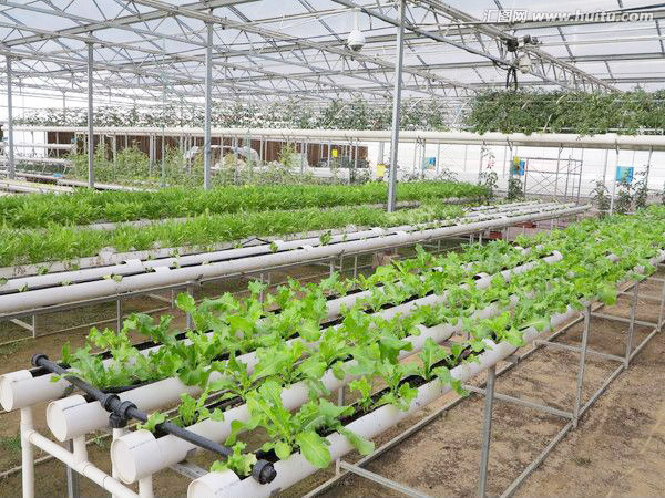 low price for film continuous arch greenhouse