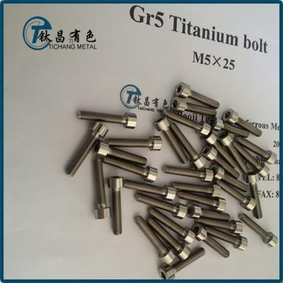 JIS B1176 Titanium Hex Socket Thin Bolts & Screws