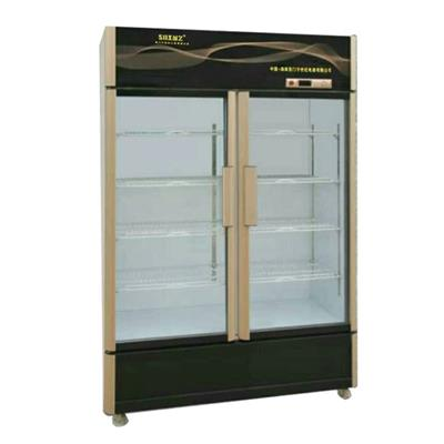 Side By Side Double Glass Door Upright Display Freezers For Drinks Or Beverage With Customized AD Lamp Boxes