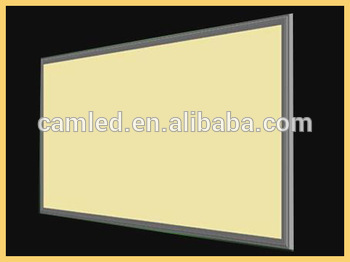 wholesale price dimmable driver 30x120cm led panel light