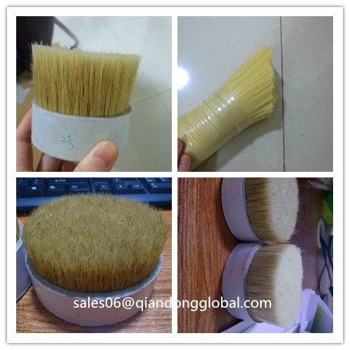 natural white color hog bristle