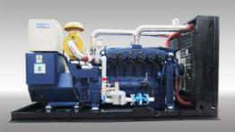 Gasification syngas powered gas generator set