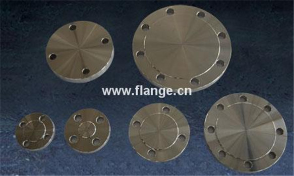 high quality ss304/SS316 forged stainless steel flange supplier