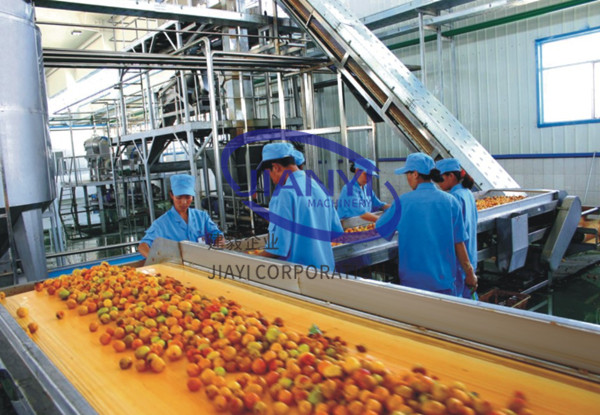 mango juice processing machine  JIANYI Machinery