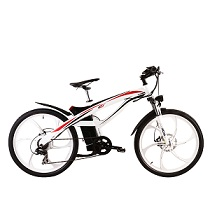 Electric Bike TDE01