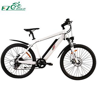 Electric Bike TDE03