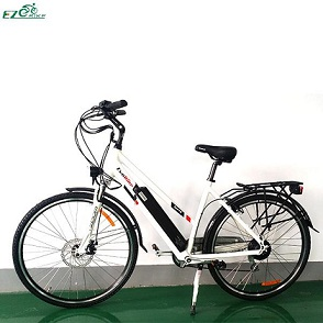 Electric Bike TDF04