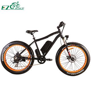 Electric Bike TDE07