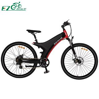 Electric Bike TDA11 250W