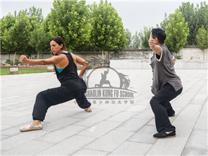 baji training in Qufu Shaolin Kung Fu School