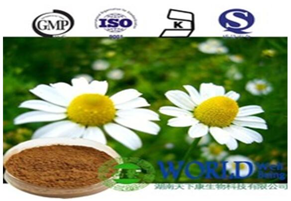chamomile extract powder 10:1 HPLC pure nature chamomile extract powder chamomile extract