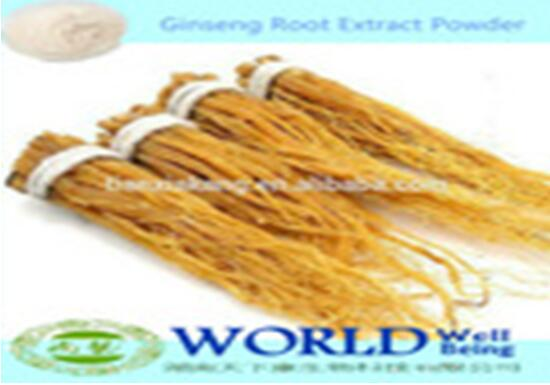 Chinese Manufacturer Ginseng Extract 4%-80% Ginsenosides 2015 Ginseng Extract Powder/Ginseng Root Extract Powder/Ginseng Extract