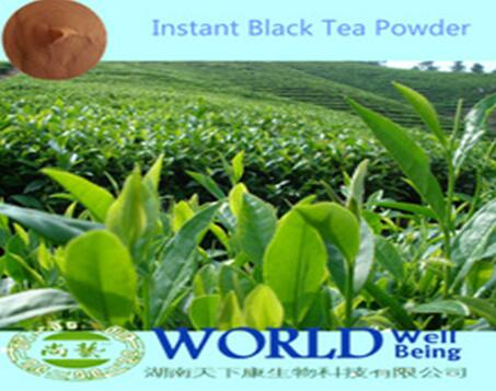 China Manufacturer 100% Natural Organic High Quality Instant Green Tea Powder/Instant Black Tea Powder Instant Tea Powder