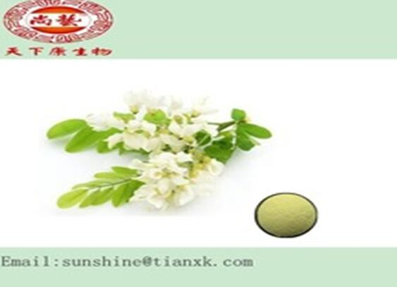 Quercetin Extract Powder Sophora japonica Flower Rutoside Powder 98%  Huai Bud Rutin Powder