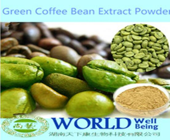 Hot Sell 50% Chlorogenic Acid Green Coffee Bean Powder/Green Coffee Bean Extract/Green Coffee Extract Powder